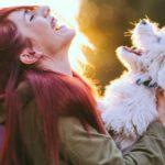 Hacer feliz a un perro es muy fácil (Istock)