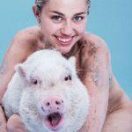 Miley Cyrus adora a su cerdita Bubba Sue (Instagram)