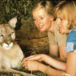 Tippi Hedren y Melanie Griffith tenían varios leones (Gtresonline)